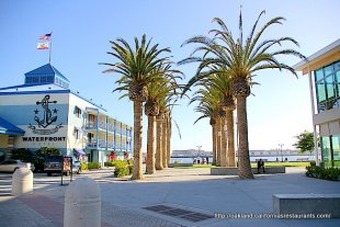 Jack London Square Waterfront Hotel Palm Trees